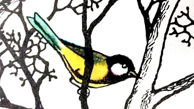 Stunde der Gartenvögel